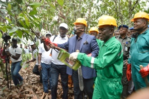 1457699384Akwa-Ibom-Govt-Launches-New-Technology-in-Cocoa-Production